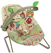 Fisher Price Woodsie Friends Bouncer